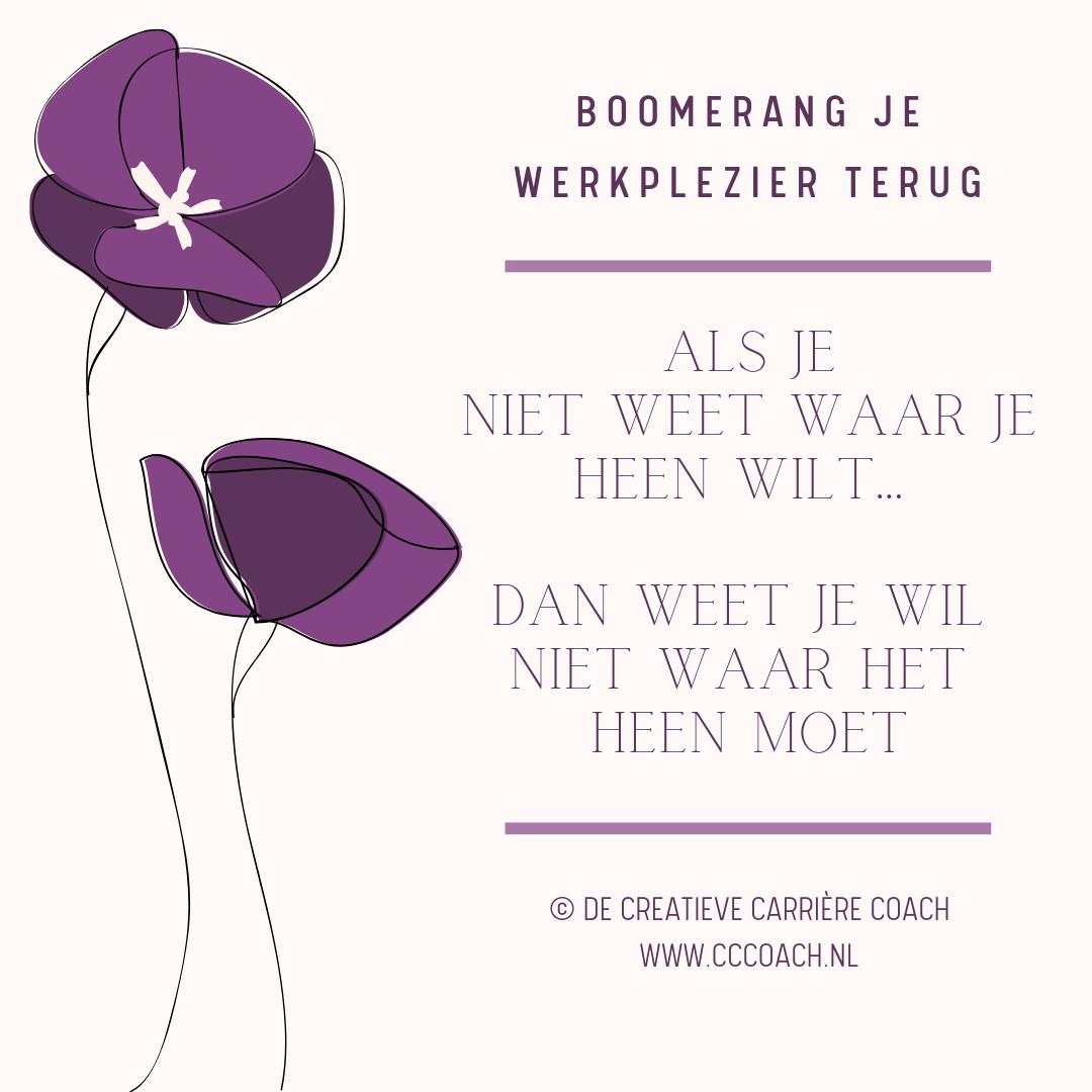 Boomerang-je-werkplezier-terug-De-Creatieve-Carrière-Coach